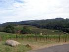 Guia revela opções de turismo rural no circuito das frutas em Louveira