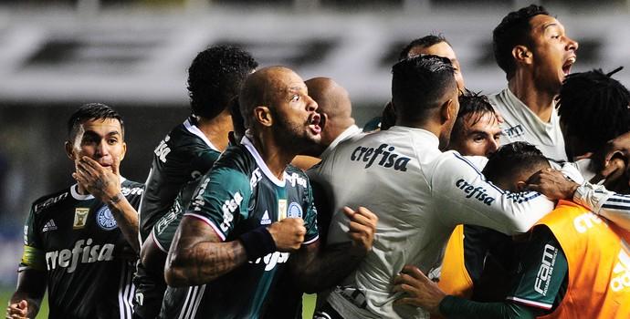 Gol Santos x Palmeiras Felipe Melo (Foto: Marcos Ribolli)