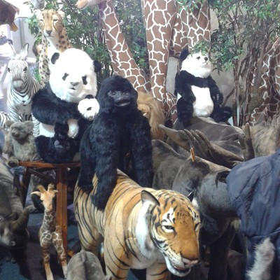 Animais decorativos são a atração da Nusa Dua (Foto: PEGN/Isabela Moreira)