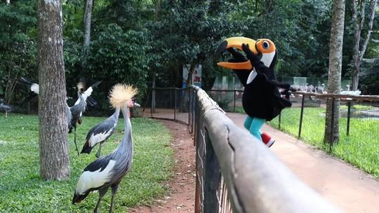 'Plug' deu uma voltinha pelo Parque das Aves
