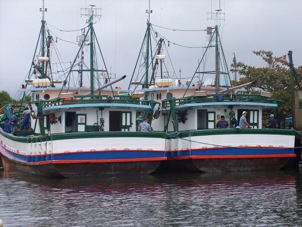 No litoral de São Paulo, a pesca de parelha é realizada por barcos de tamanho médio, que podem carregar até 20 toneladas de peixes (Foto: Divulgação)