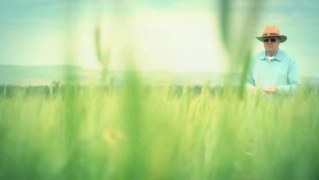 Plínio Destro (Foto: Reprodução)