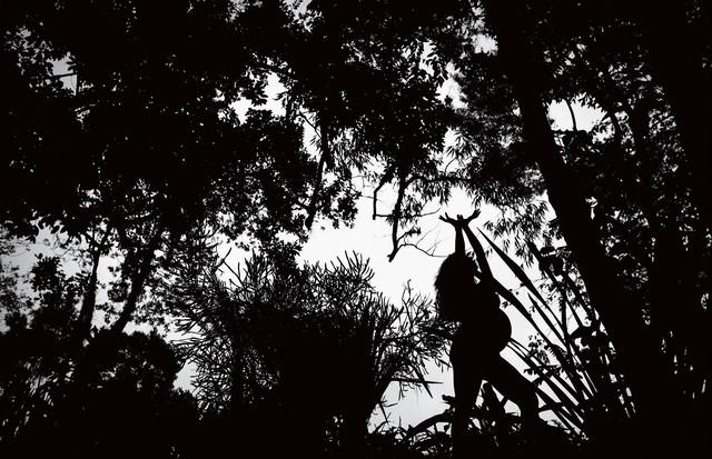 """""""Aqui, retratei a artista Adriana Varejão na Floresta da Tijuca. Esta fotografia é uma representação da ideia da natureza e do homem como um organismo único e integrado. Nós somos parte dela tanto quanto as plantas, os pássaros, os animais e os mares"""" (Foto: MURILLO MEIRELLES. DENTRO E FORA, 2013)"""