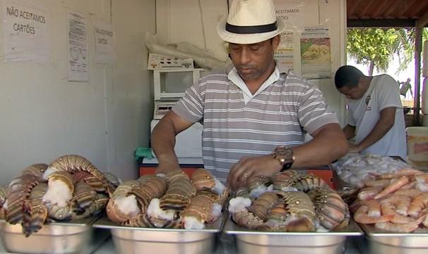 Produção de lagosta é assunto do NE Rural deste domingo (21). (Foto: Divulgação)