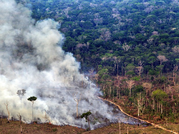 Desmatamento e queimada registrados em setembro de 2010 na região de Lábrea, no Sul do estado do Amazonas. Sistema de medição do Inpe detectou devastação de 7 mil km² em 2010 (Foto: Divulgação/Greenpeace/Marizilda Cruppe/EVE )