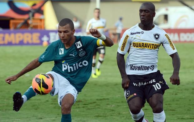Amaral e Seedorf Goiás x Botafogo (Foto: André Costa / Agência Estado)