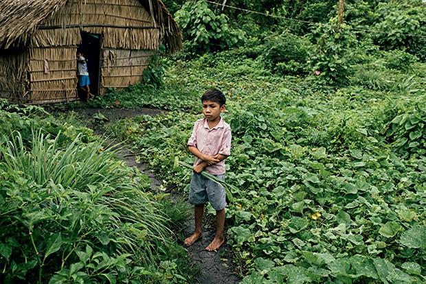 OS SEM-PAPEL Um garoto na roça da aldeia Sawre Muybu. Ainda não demarcada, a reserva poderá ir para debaixo d'água (Foto: Filipe Redondo/ÉPOCA)