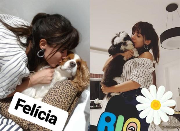 Anitta brinca com os cachorros e mostra nova franja (Foto: Reprodução/Instagram)