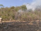 Bombeiros continuam a combater queimada no Morro do Frota, em GO