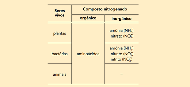 Compostos nitrogenados (Foto: Uerj/2014)