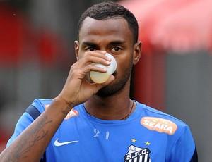 Renê Júnior (Foto: Divulgação Santos FC)