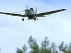 Avião lança sementes de araucárias para reflorestamento no RS