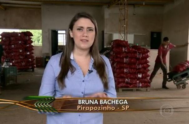 Produção da batata doce é comercializada também na região Nordeste (Foto: Reprodução/TV Fronteira)