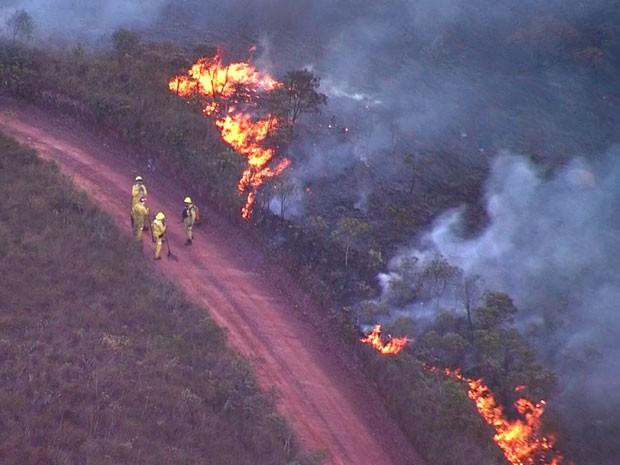 Bombeiros e brigadistas trabalham no combate às chamas no Parque do Rola Moça (Foto: Reprodução / TV Globo)