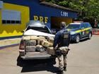 PRF apreende 647 kg de maconha em carro em Lajeado, no RS