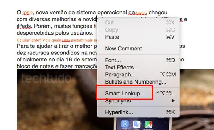 Clique sobre a palavra e escolha a opção Smart Lookup (foto: Reprodução/André Sugai)