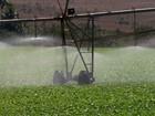 Produtores economizam e aumentam o volume de água em propriedades