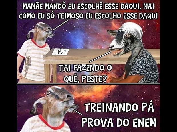 Enem já foi tema de várias tirinhas do Bode Gaiato, personagem do Facebook que tem 4 milhões de seguidores (Foto: Reprodução / Facebook)