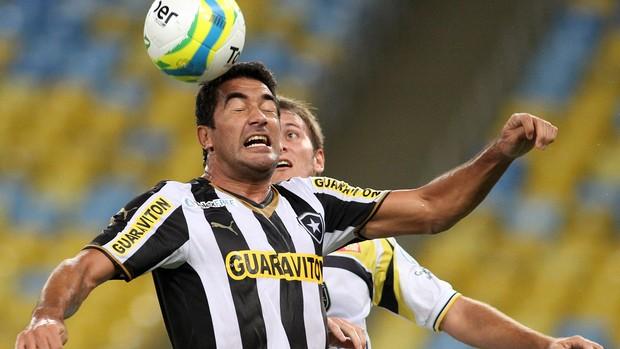 Ferreyra Botafogo x Volta Redonda (Foto: Satiro Sodré/SSPress)