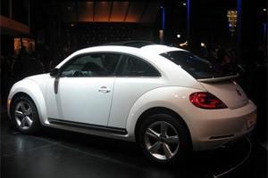 fusca beetle (Foto: Luciana de Oliveira/G1)