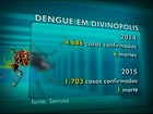 Divinópolis fecha ano com mais de 1.700 casos confirmados de dengue