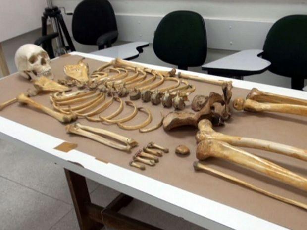 Museu de ossos humanos da FOP Piracicaba abrirá em 2015 (Foto: Edijan Del Santo/EPTV)