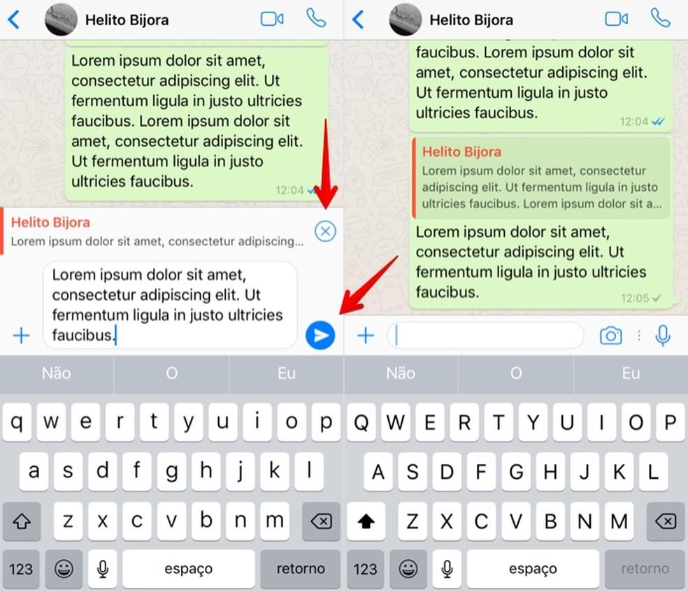 Digite a sua resposta e envie no WhatsApp para iPhone (Foto: Reprodução/Helito Bijora)