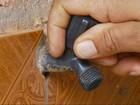 Produtores doam água para ajudar no abastecimento em Nepomuceno, MG