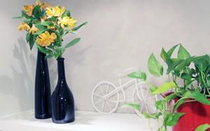 Garrafas vazias podem ser reaproveitadas na decoração (Foto: Evandro Mucha)