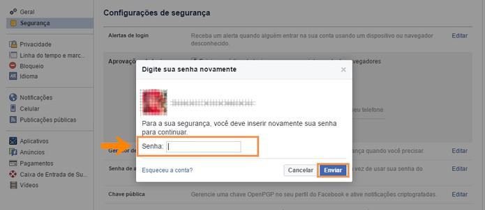 Digite sua senha do Facebook para acessar os códigos extras (Foto: Reprodução/Barbara Mannara)