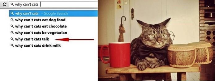 Buscas esquisitas no Google mostram que internautas estão preocupados em saber por que não falamos com animais (Foto: Reprodução)