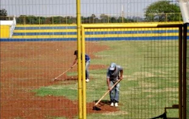 Cene (Foto: Divulgação/Cene)