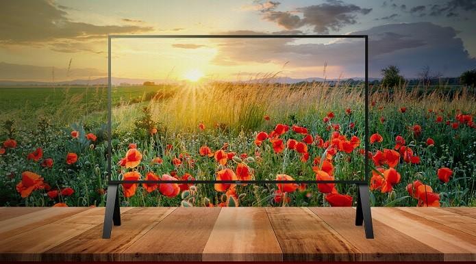 Ela conta com tecnologias exclusivas que deixam a imagem muito mais próxima da realidade (Foto: Divulgação/Sony)