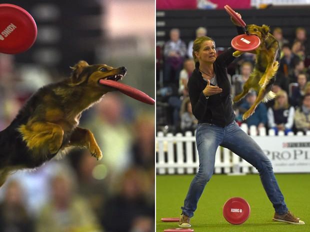 'Cão voador' salta em evento neste domingo (11) na Alemanha (Foto: AFP/ Patrik Stollarz)