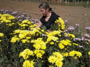 Cerca de 40% do setor é ocupado por mulheres (Foto: Divulgação)