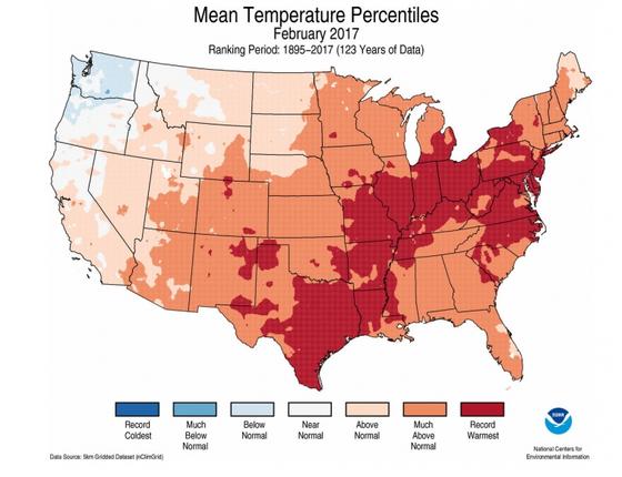 Mapa mostra em vermelho onde fevereiro bateu o recorde histórico de calor. Em laranja escuro e claro, onde o mês ficou muito mais quente ou apenas mais quente do que a média (Foto: NOAA)