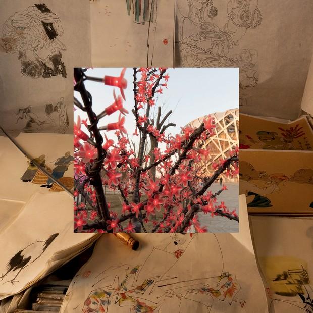Série Amarela, com imagens contemporâneas emolduradas por papéis antigos chineses, um dos destaques da mostra (Foto: Claudia Jaguaribe, Divulgação, Steve Mccurry e Horst P. Horst)