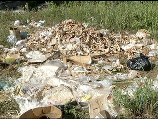 Mau cheiro provocado por descarte de ossos incomoda moradores em Gurupi (Foto: Reprodução/TV Anhanguera)