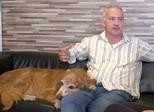 Especialistas explicam relação de afeto e fidelidade entre cães e donos