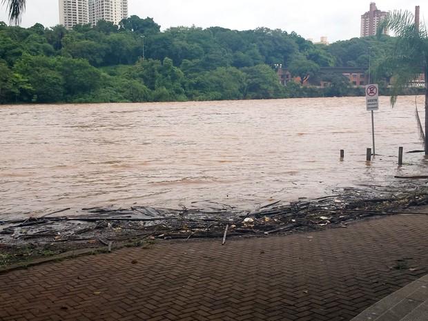 Rio Piracicaba na manhã desta terça-feira (29) (Foto: Thainara Cabral/G1)