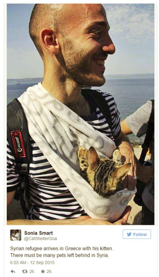 E não foram apenas momentos humanos que viralizaram - uma série de fotos de um sírio e seu gato circulou intensamente no Twitter (Foto: BBC)