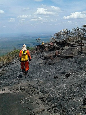 Combate ao fogo na Chapada Diamantina, na Bahia, na sexta-feira (27) (Foto: Maj BM Vianey/Corpo de Bombeiros Militar)
