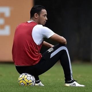 Ricardo Oliveira, Santos (Foto: Ivan Storti/Santos FC)