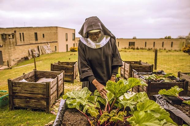 Tecnologia;Meio Ambiente;Raízes Desejo de reaproximação da terra levou irmãs à autossuficiência em vegetais, frutas, ovos e leite (Foto: Dan Kitwood/Getty Images)