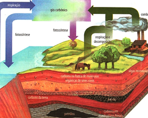 Veja a formação da água e do oxigênio (Colégio Qi)