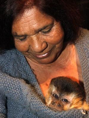 Macaco Chico morre aos 38 anos em São Carlos (Foto: Fabio Rodrigues/G1)