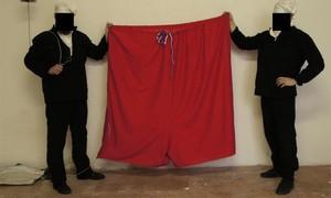 Grupo substitui bandeira presidencial tcheca por cueca gigante