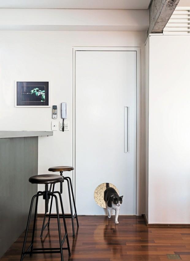 Passagem liberada. Todas as portas do apartamento têm túneis que permitem a circulação dos três gatos do casal. Na foto, o gato Dudu, super-habituado a caminhar livremente pelo apê (Foto: Edu Castello / Editora Globo)
