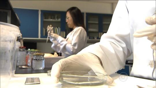 Combate ao zika vírus recebe reforço de pesquisadores da África