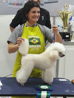 Tosadora foi buscar Poodle Toy no Rio Grande do Sul (Foto: Arquivo pessoal)